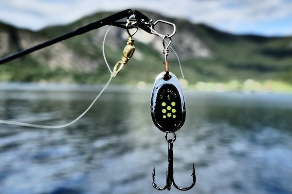 experience fishing